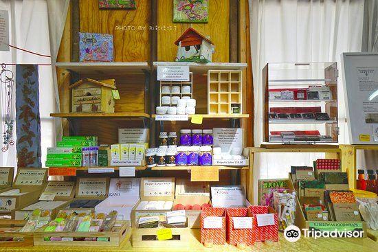 Clifford's Honey Farm2