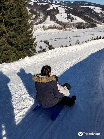 Alpsee Bergwelt4