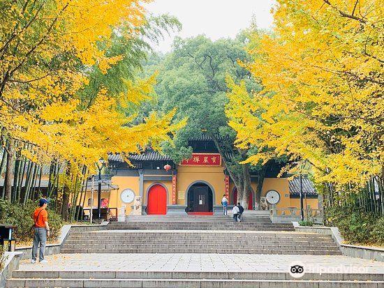 Yushan Park1