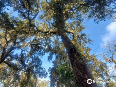 Timucuan Ecological and Historical Preserve