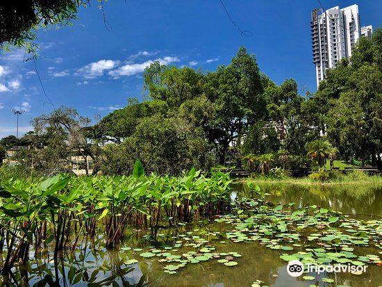 Toa Payoh Town Park2