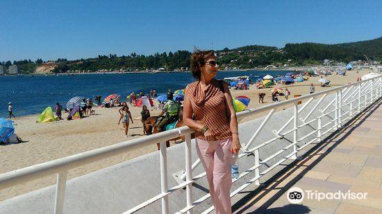 Playa de Dichato1