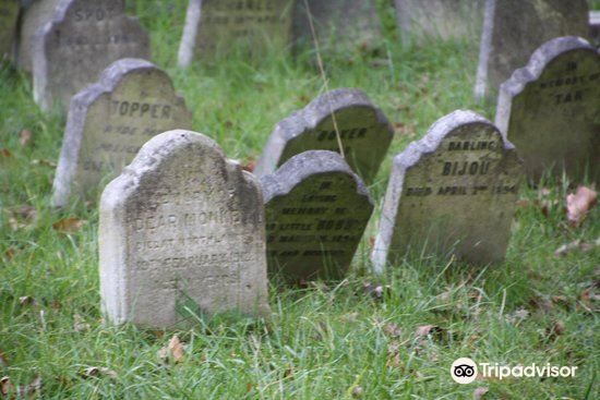 The Pet Cemetery of Hyde Park4