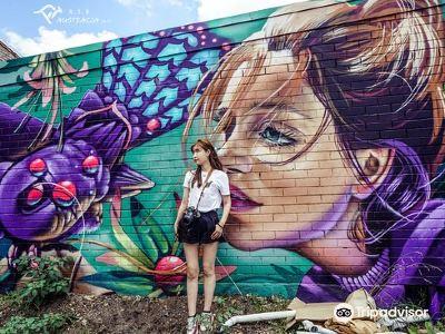 Street Art Walk - by Street Art Murals Australia