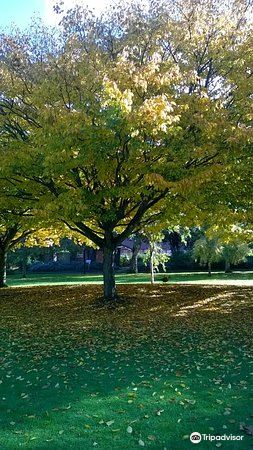 Blenheim Gardens2