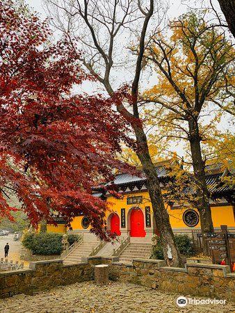 Yushan Park4