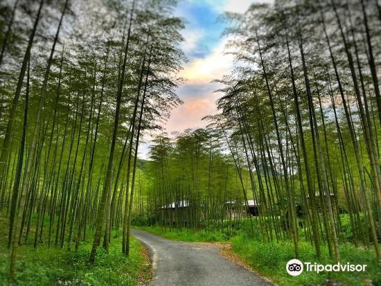 Tianxia Yinkeng Scenic Area2
