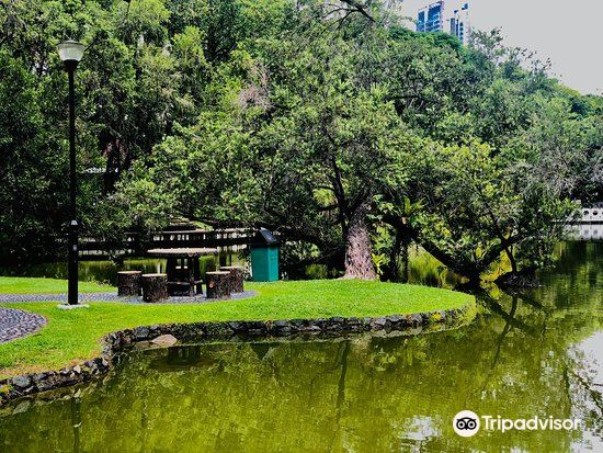 Toa Payoh Town Park3