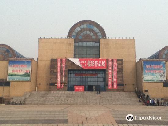 Zibo Shoucang Museum3
