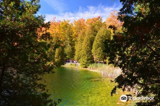 Crawford Lake Conservation Area4