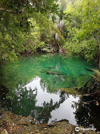 土著眼生態公園2