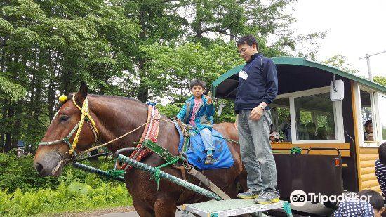 Yachiyo Farm1