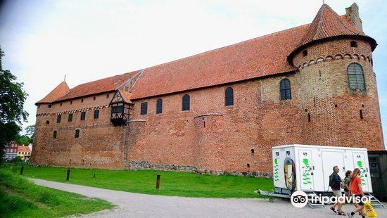 Nyborg Castle4
