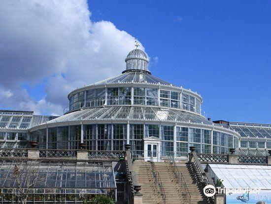 Copenhagen Botanical Garden2