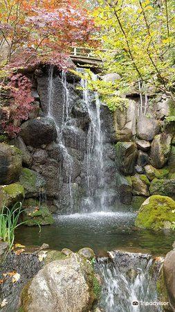 Anderson Japanese Gardens1