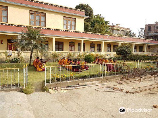 Shechen Monastery4
