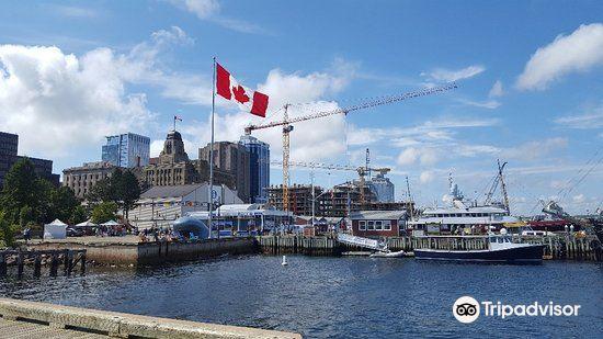 Halifax Waterfront Boardwalk4
