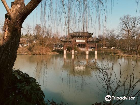Xiajing1