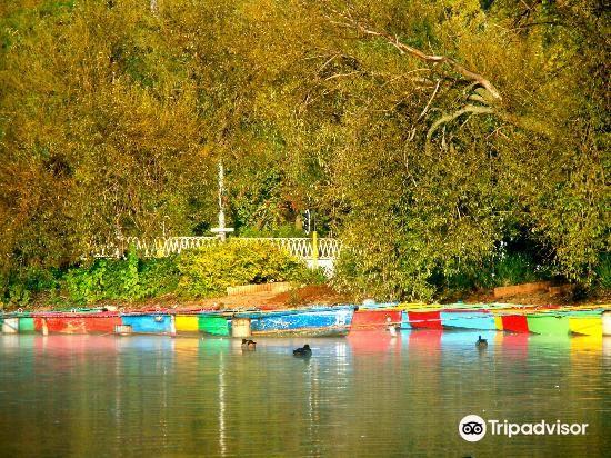 Zoo Lake2