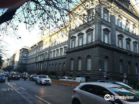 Universita degli Studi di Napoli Federico II4