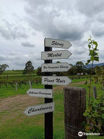 Blueberry Hill Wines3