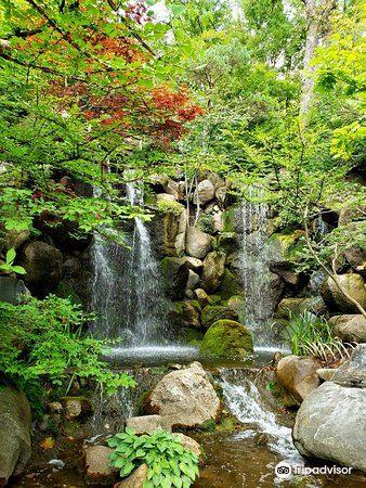 Anderson Japanese Gardens3