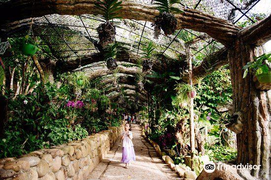 싼야 열대우림광장1