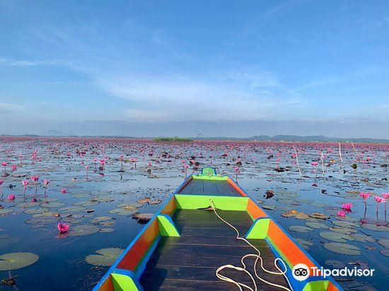 Thale Noi Waterbird Park1