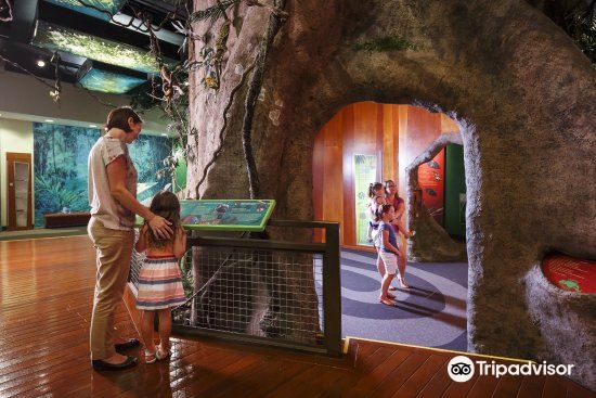 Museum of Tropical Queensland2