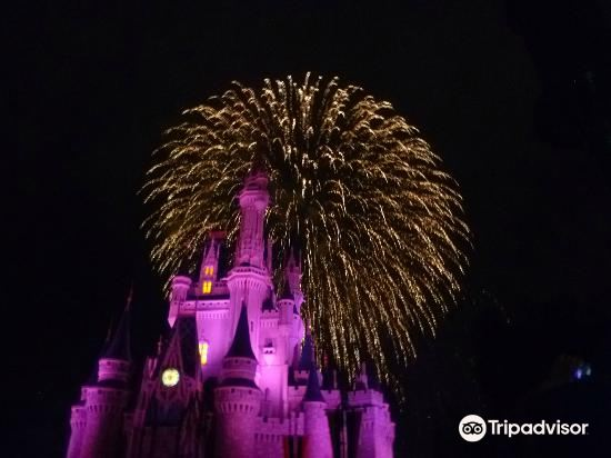 Happily Ever After Fireworks1