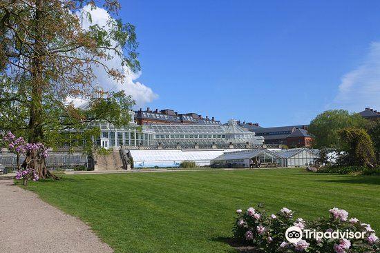 Copenhagen Botanical Garden1