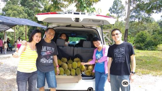 Jimmy's Durian Orchard3