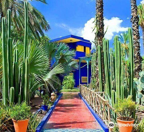 Majorelle Garden2