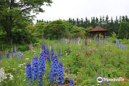 Shichiku Garden2
