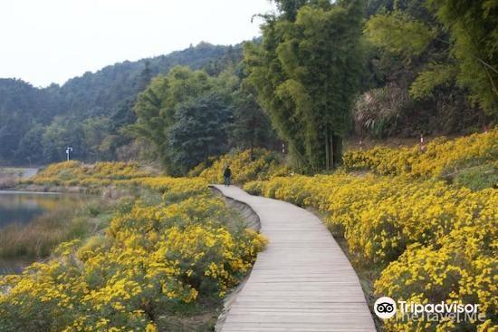 스먼국가삼림공원1