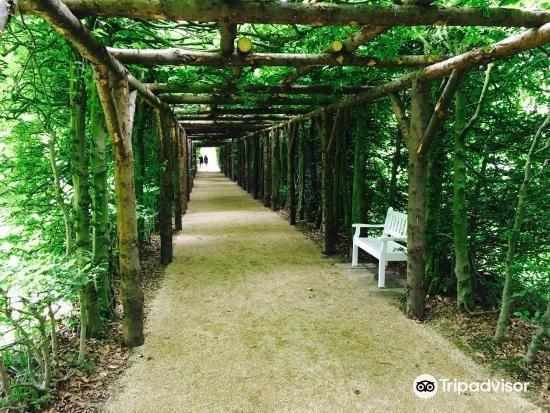 Botanischer Garten3