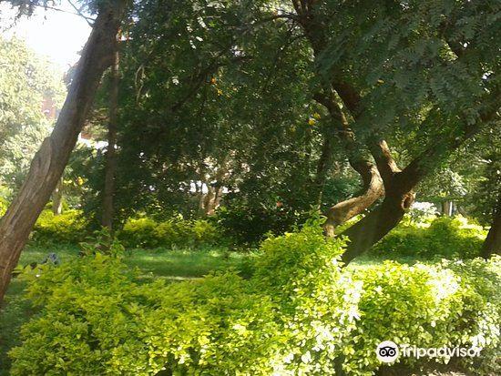 Jeevanjee Gardens4