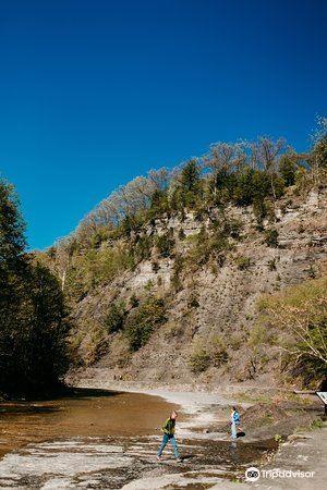 Cayuga Lake2
