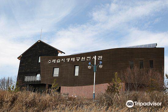 Sorae Ecology Park3