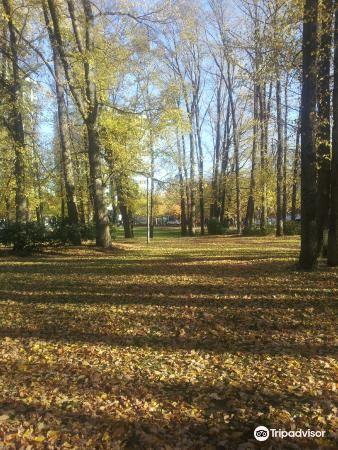 Glebe Park4