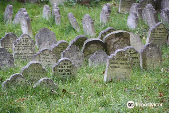 The Pet Cemetery of Hyde Park3