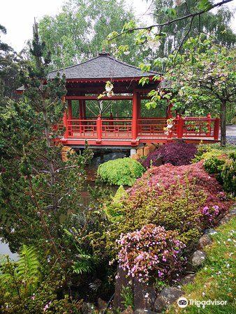 Emu Valley Rhododendron Garden3