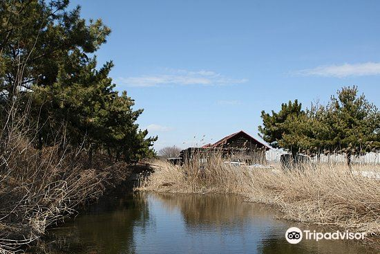 Sorae Ecology Park1