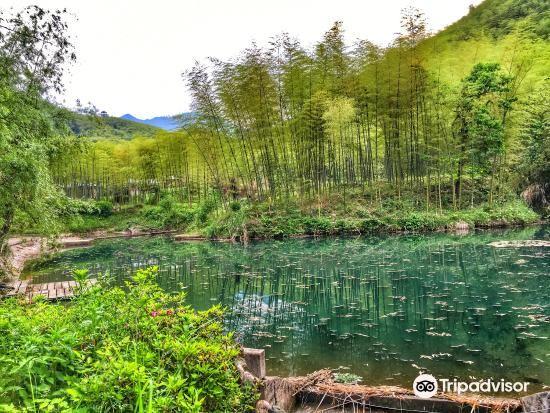 Tianxia Yinkeng Scenic Area4