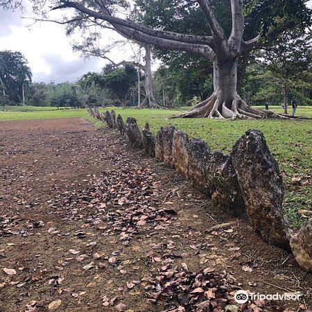 Parque Ceremonial Indigena de Caguana4