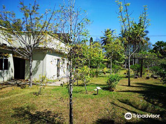 Ayer Hangat Village1