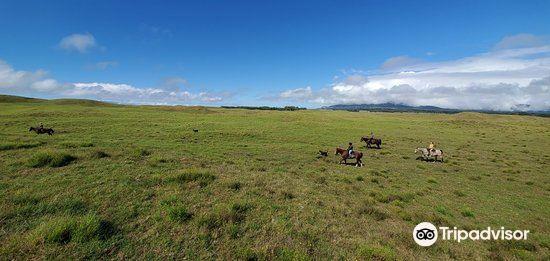 Dahana Ranch2