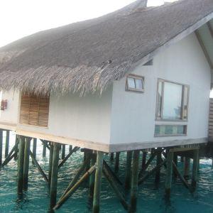卓美亚维塔维丽岛旅游景点攻略图