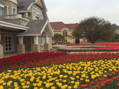Taicang Modern Agriculture Park