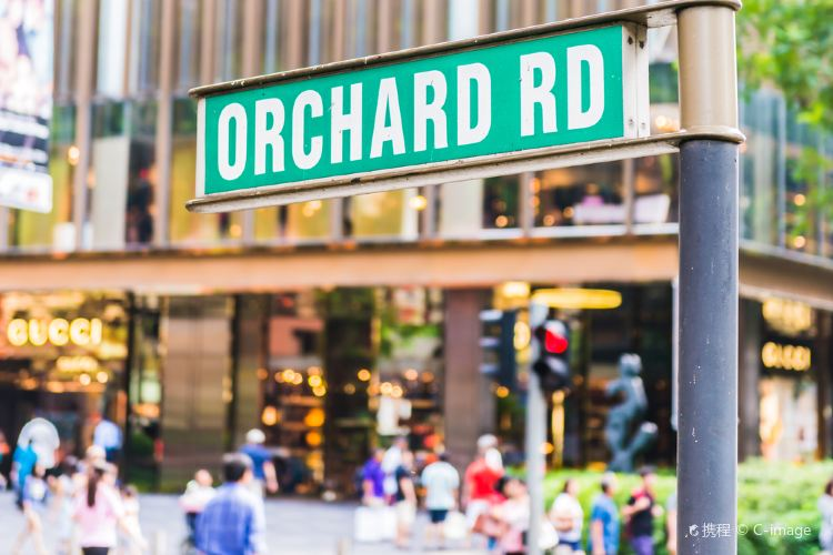 Orchard Road3